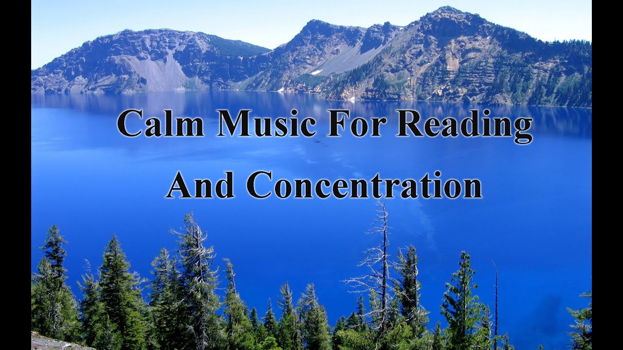 Calm Music For Reading And Concentration | forest backgrounds / bird sounds