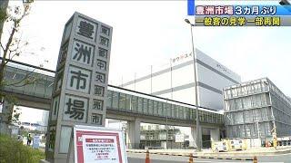 豊洲市場見学が一部再開 早朝のマグロ競りはまだ先(20/06/08)