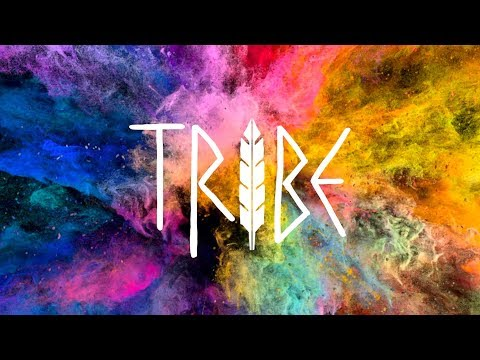 Tribe Daily Bumps New Theme Song   Lyric