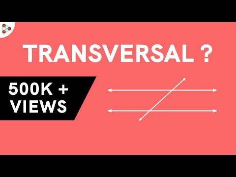What are the Different Angles Formed by a Transversal with Two Parallel Lines?