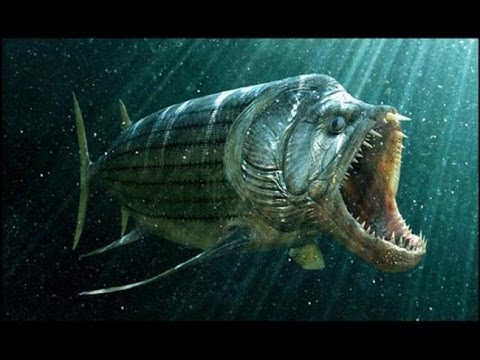 Giant Prehistoric Sea Creatures Prehistoric Sea...