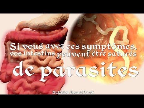 Avez Vous Ces Symptômes, Alors Vos Intestins Peuvent être Saturés De Parasites