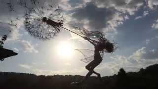 Dancing with Dandelions