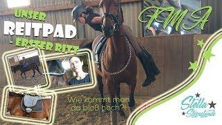 [FMA] - Am Stall & Erstes Mal Reiten mit Reitpad | #StellaSternstunde – Dressurpferd im Aktivstall