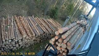 Załadunek i rozładunek kłody 3m. Transport drewna Holztransport transport Leśny