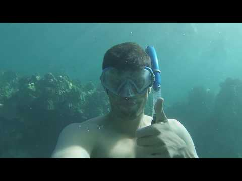 Maui Adventures: Snorkeling in Turtle Bay #4