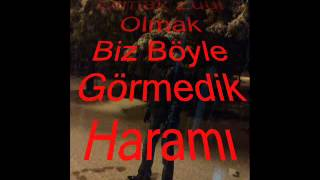 AHMET ŞAFAK YALNIZ KURT 1