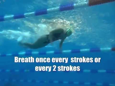 Kỹ thuật bơi bướm