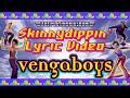 Miniature de la vidéo de la chanson Skinnydippin'