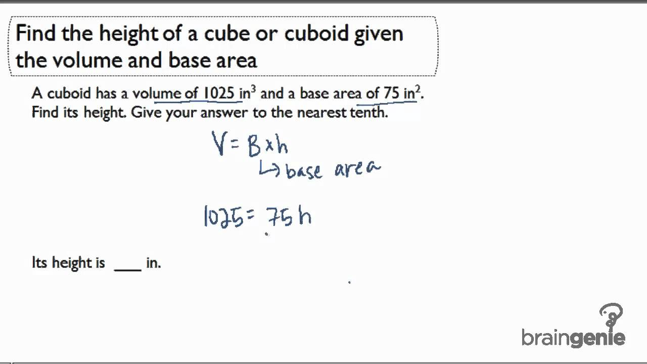 133 Find The Height Of A Cube Or Cuboid Given The Volume And Base Area