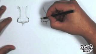 Aula #12 - Como desenhar Nariz (Lesson # 12 - How to Draw Nose)