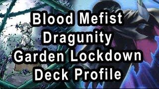 Blood Mefist Dragunity Garden Lockdown Deck Profile