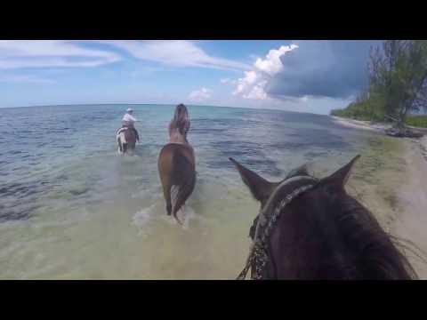 Grand Cayman Island Adventure