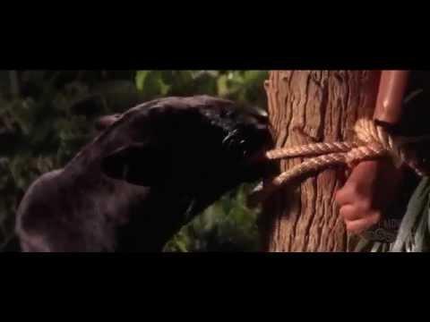 Семейный фильм «Книга джунглей   Маугли» 1994   YouTube