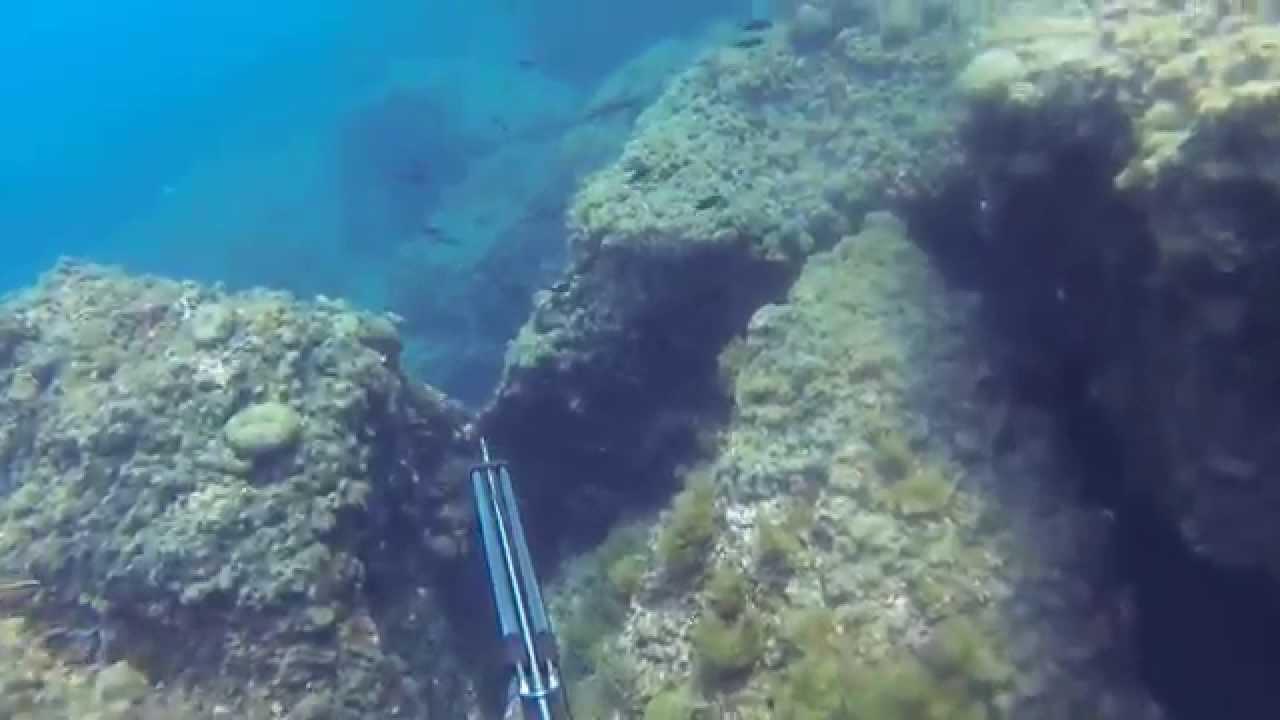 Vidéo Chasse sous marine Ostriconi Corse