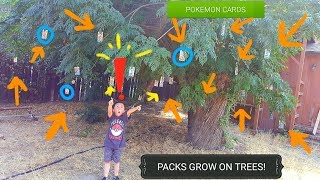 POKEMON CARDS GROW ON THIS TREE!! We Found A Hidden Wonder!! MOST Craziest Video You Will Ever See!!
