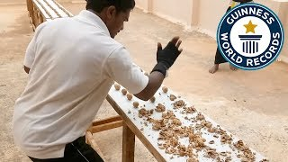 Most walnuts crushed by hand in one minute - Guinness World Records Top 10 Video