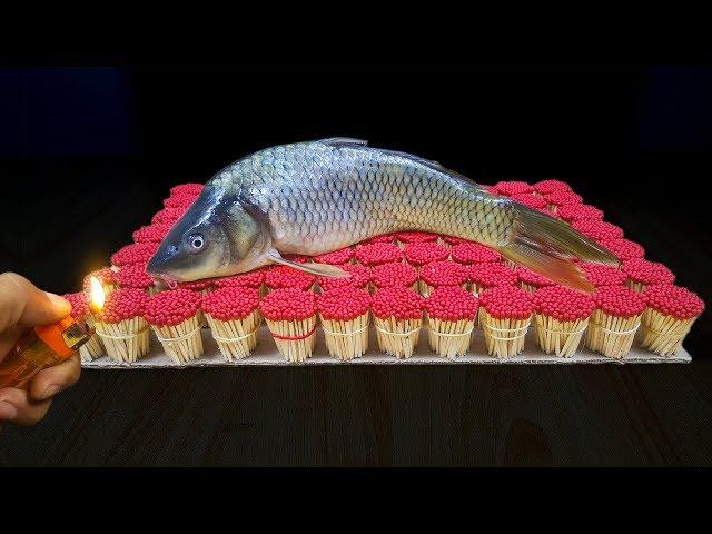 EXPERIMENT Match Vs Fish