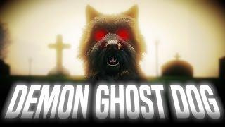 Video DEMON GHOST DOG | GTA 5 Myths & Legends (Investigation) download MP3, 3GP, MP4, WEBM, AVI, FLV Januari 2018