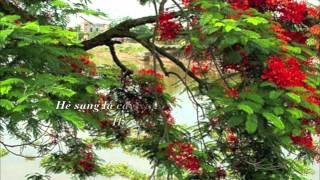 Hè Sang/Lá Xanh Mùa Hè (onscreen lyrics) by Ban Mây Trắng