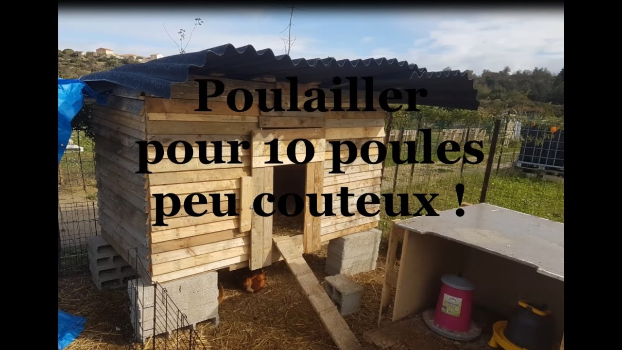 Construction d 39 un poulailler pour d butant youtube for Construction poulailler en dur