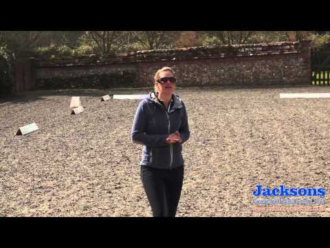 Anna RossDavies  How to ride a correct leg yield