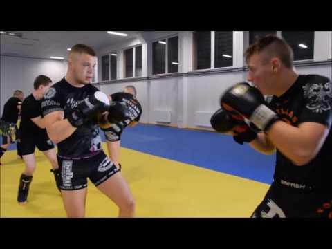 Trenujesz MMA?    Gorillas Koszalin