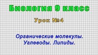Биология 9 класс (Урок№4 - Органические молекулы. Углеводы. Липиды.)