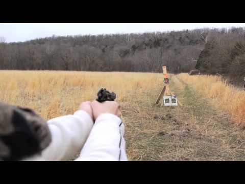 Beretta 84fs Cheetah Bridget