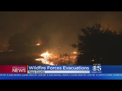WINE COUNTRY WILDFIRES:  Fires raging across Napa and Sonoma counties burn homes and force evacuatio