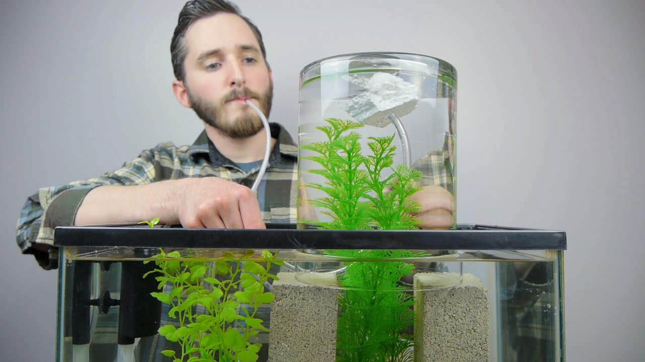 Make A Vacuum Suspended Fish Tank - YouTube