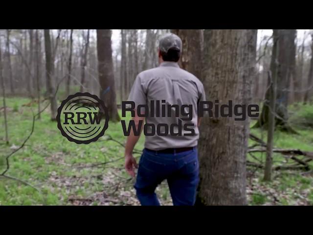 Veneer Logs & Timber Processing - Rolling Ridge Woods