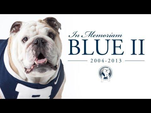 Cutest Mascot in College Sports Bids a Heartbreaking Adieu