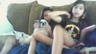 Repeat youtube video carcar3374's webcam video
