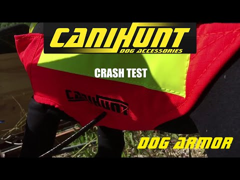 Crash Test gilet de protection DOG ARMOR V2 CANIHUNT