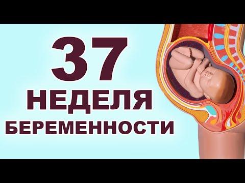 Опасно ли болеть на 37 неделе беременности