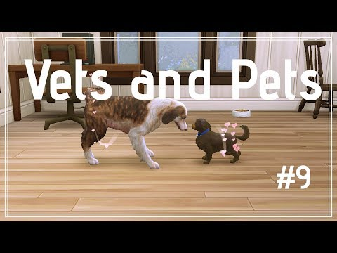 The Sims 4   Vets and Pets   Part 9   Hiring and Firing