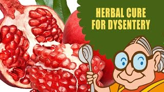 Dysentery Treatment - Natural Ayurvedic Home Remedies - Butter Milk &  Pomegranate