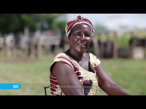 Full of energy   Zimbabwe   SNV HD