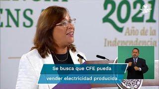 La secretaria de Energía, Rocío Nahle afirmó que la iniciativa de reforma constitucional no busca nacionalizar a las empresas que actualmente participan en el mercado eléctrico