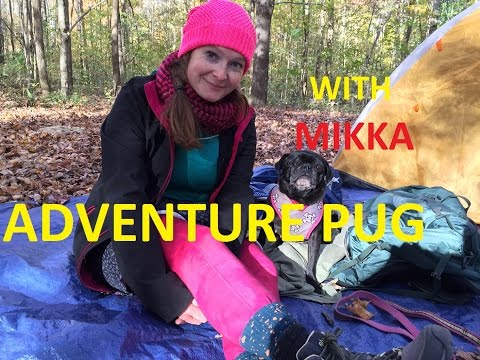 Overnight Backpacking with Adventure Pug - Shades State Park