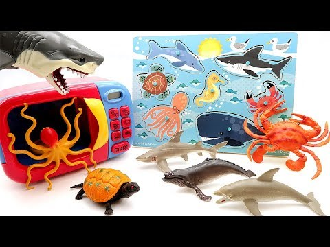 Learn Sea Animals With Wooden Puzzle! Shark Crab Dolphin Turtle Crocodile Fish - microwave Toys
