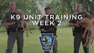 K9 Unit Training - Week 2