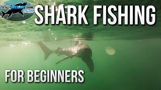 Shark Fishing for Beginners | TAFishing