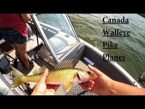 Canada Trip!! Nestor Falls Lake of The Woods!!