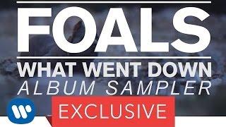 FOALS - What Went Down (Album Sampler)