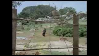 IK RITU AAYE IK RITU JAAYE -  KISHORE KUMAR-ANAND BAKSHI-LAXMI PYARE  ( GAUTAM GOVINDA-1979)