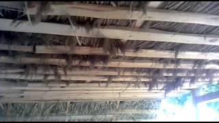Дом своими руками. Утепление камышом.(В 2013 году начал стройку, с того времени уже много сделано, хочу поделится тем что уже есть., 2014-09-06T20:02:04.000Z)
