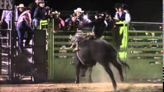 Bucking Bulls - KMH Bucking Bulls - Battle of the Chiefs Bull Riding - Tonopah, AZ.