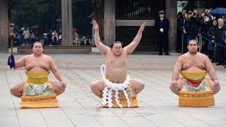 Япония: монголу впервые присвоили статус тренера сумо (новости)